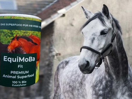 Warum hilft EquiMoBa bei Kotwasser?
