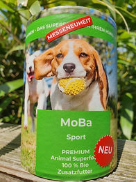 MoBa Sport.jpg