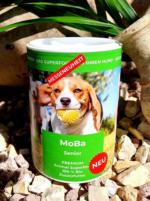 MoBa Senior