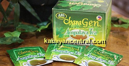 ABS Charagen Ampalaya Tea (20 x 2g tea bags)