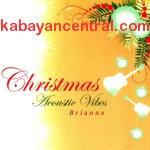 Christmas Acoustic Vibes CD - Brianna