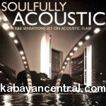 Soulfully Acoustic CD - Various Artists