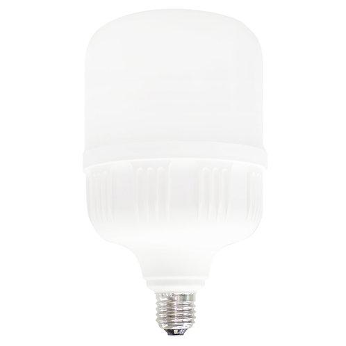 Lampara LED Alto Poder 40w 100-240v TLHP4065 - Tishman Lighting