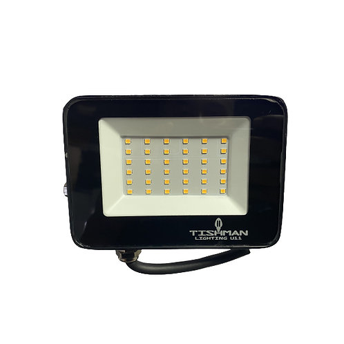 Reflector 30w 3000k LED 100-240v TLFLD3030