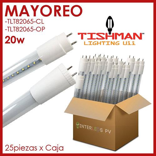 MAYOREO Tubo LED T8 20w Blanco Frío TLT82065 - Tishman Lighting