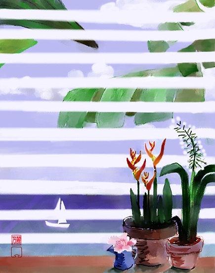 WindowOn Paradise