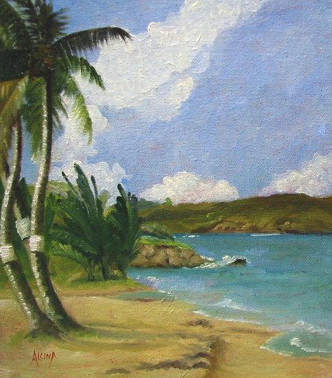 Palms Anse LaVoutte