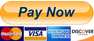 pay-now-button.png
