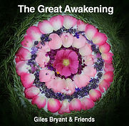 GreatAwakening-covert art.jpg