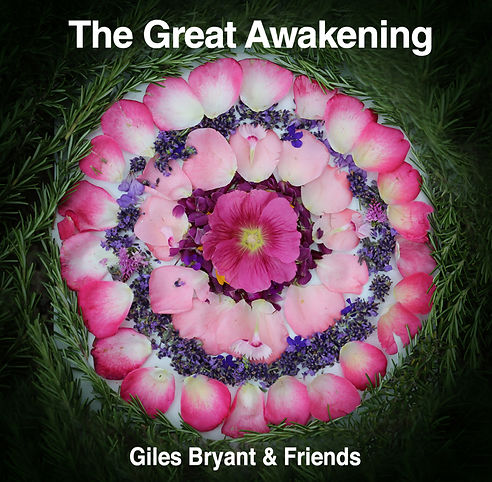 GreatAwakening-covert art.jpg