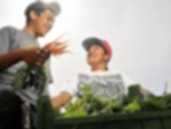 Anthony-Youth-Farm.jpg