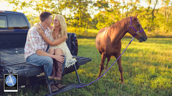 Sussex County Engagement