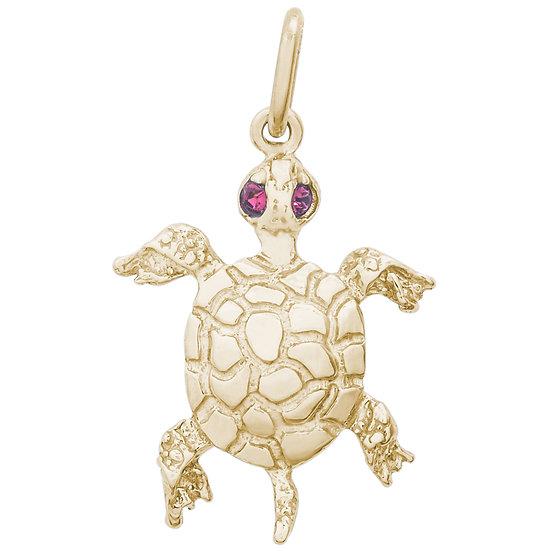 2597 Turtle