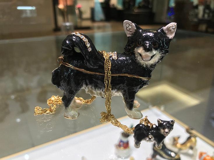 Fuzzy Chihuahua