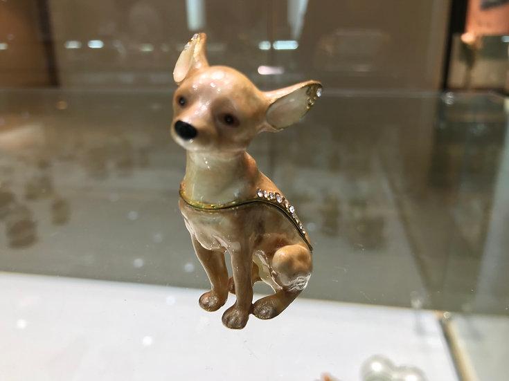 Starlight Chihuahua