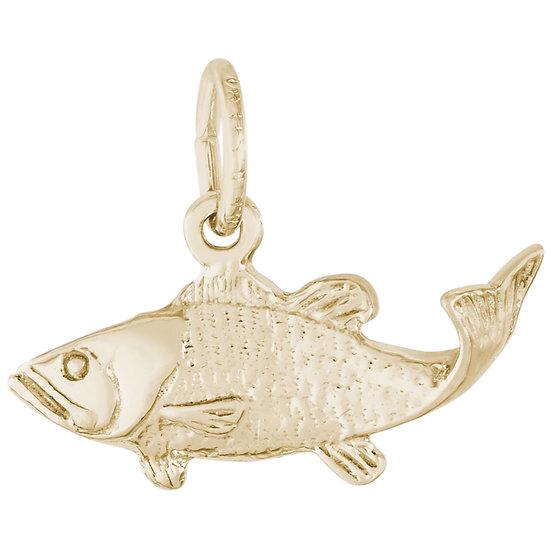 0487 Fish