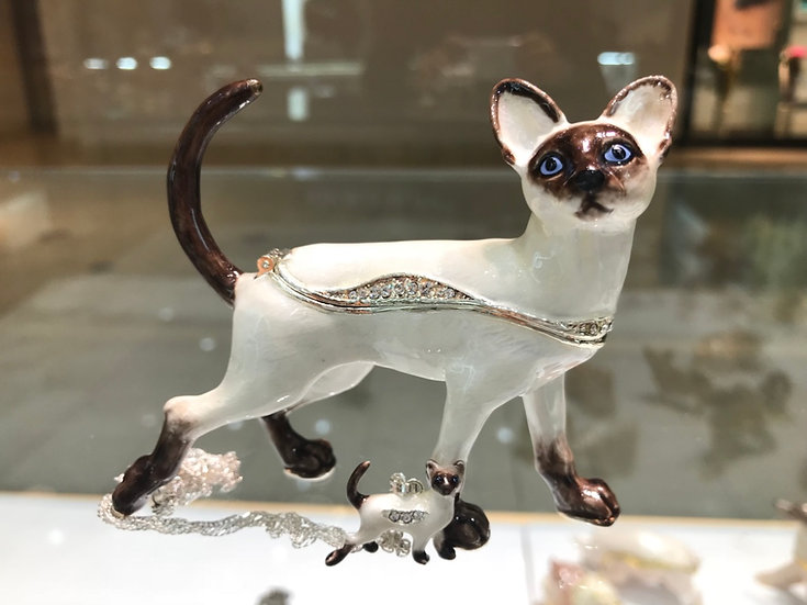 Lady Thiang the Siamese Cat