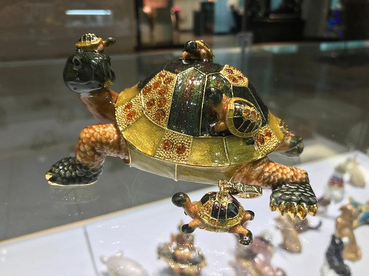 Longevity Tortoise