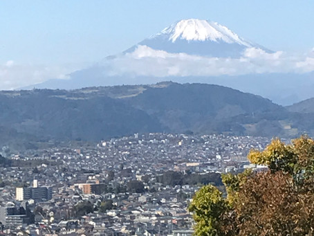 神奈川県 弘法山ハイキング