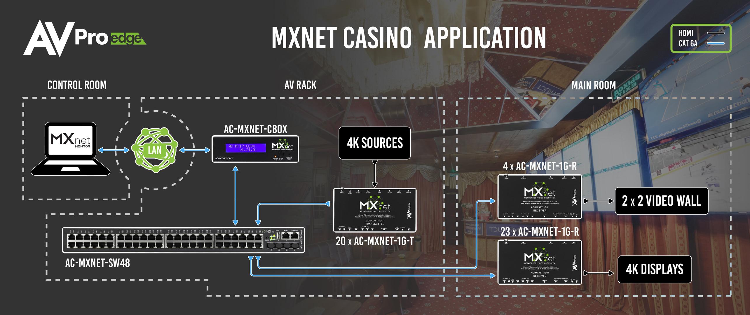 MX Net Casino Application-01.jpg