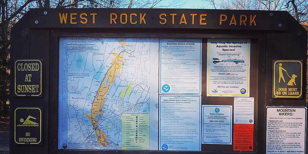 West Rock Winter Fat Ass 50k/25k