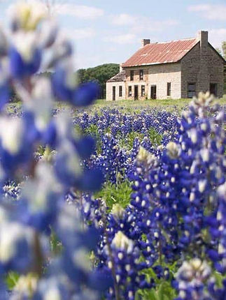 Texas Hill Country Tours