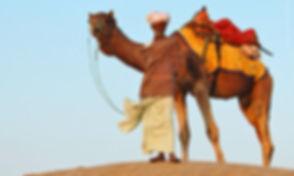 NI-17-Jaisalmer-Desert.jpg