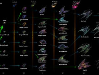 Hive Taxonomy