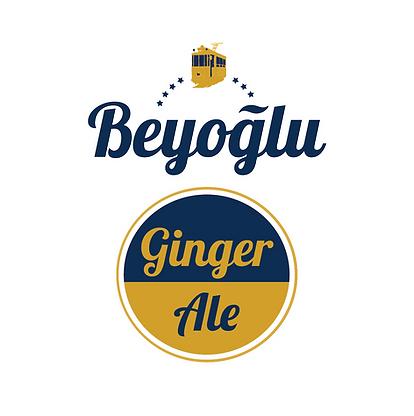 beyoglu web sitesi gingerale logo-09.png