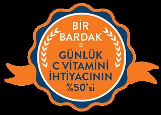 turuncgiller_%50-19.png