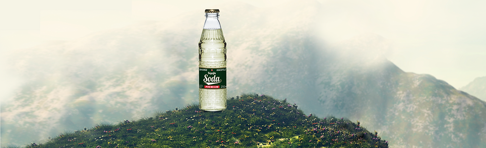 soda header2.png