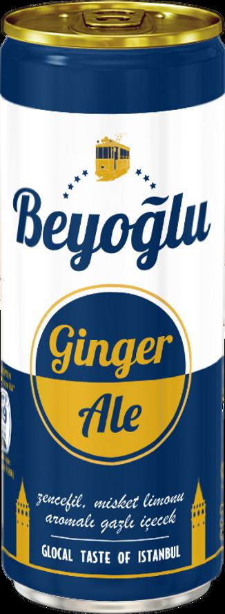Beyoglu-Ginger-Ale.png