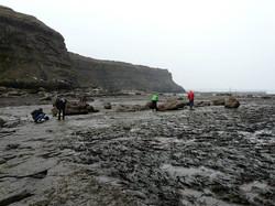 Saltwick Bay 7