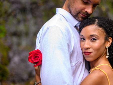 Eric & Jairrah's Wedding at Powell Gardens