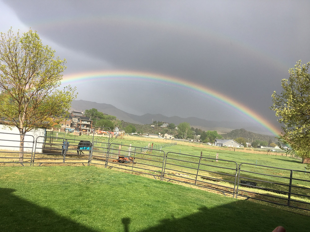 Double rainbow at the ranch...
