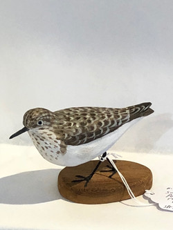 Hand Carved Sanderling
