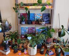 Semi Annual Plant Sales