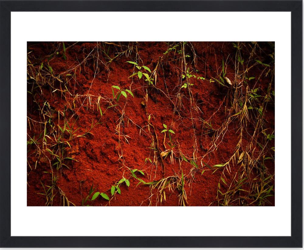 Chocolate - Fanny Sissoko - Photographie