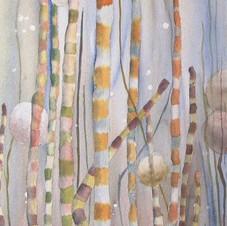 Algues - Éliane Robin