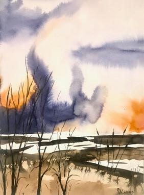 Le marais flamboyant