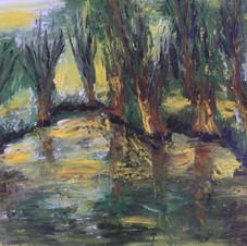 Marais Poitevin 1 - Pierre Tondu