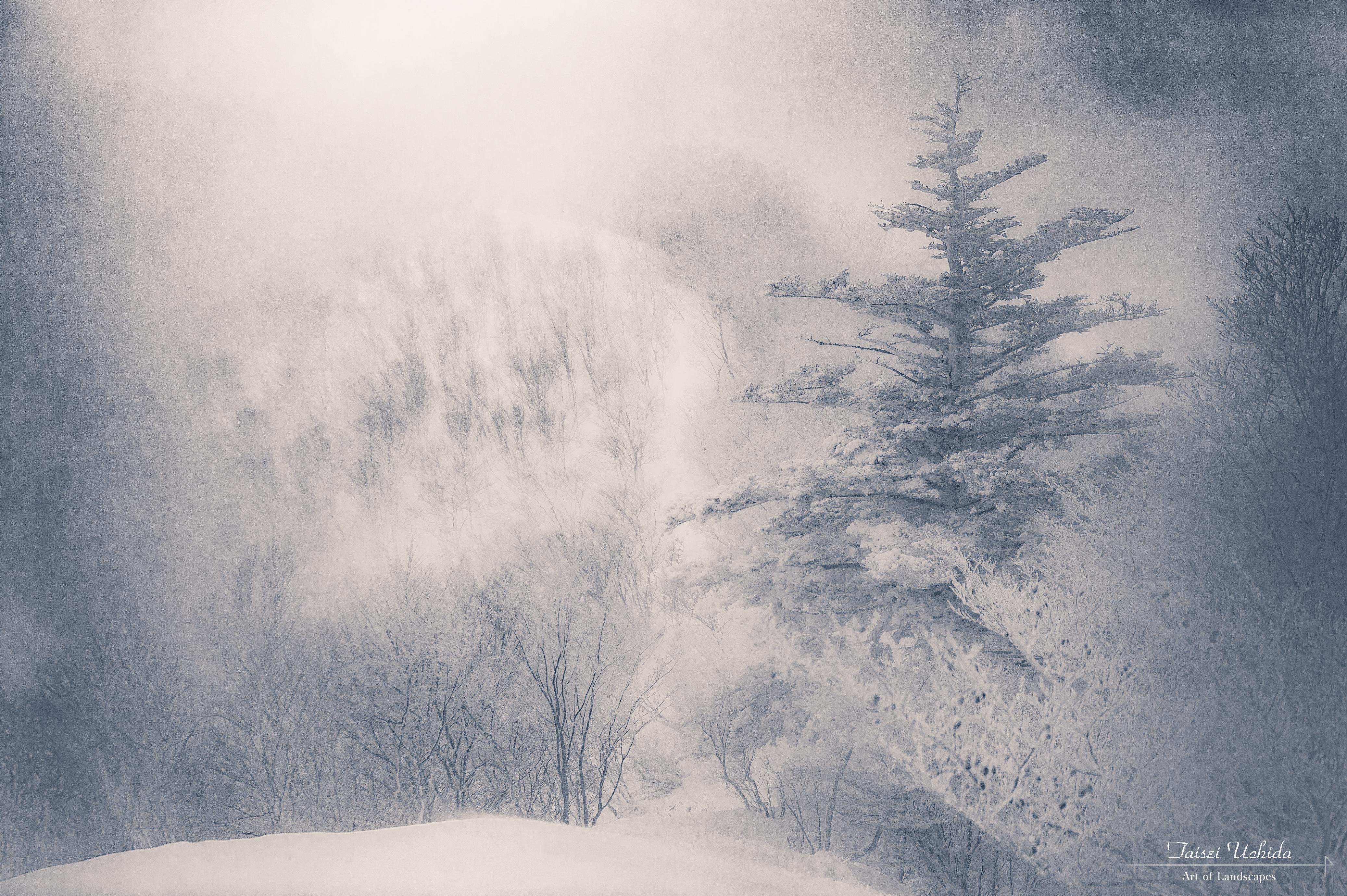 赤城山 黒檜山~駒ヶ岳