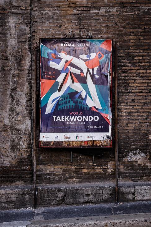 Taekwondo - Print