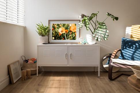 Cederberg Flowers - Framed