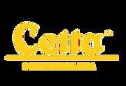 logo_celta_263x0.png