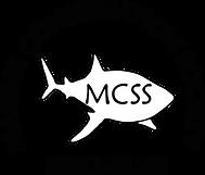 MCSS.png