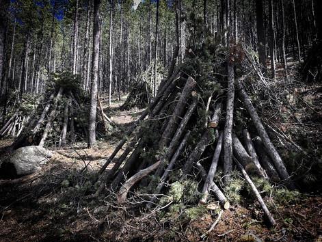Strange Things:  In the woods near Foos Pond
