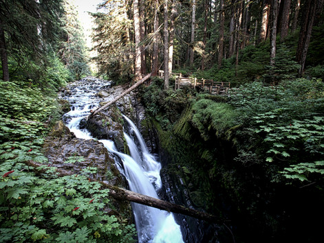 Summer Road Trip 2018, Part 10:Olympic National Park, Crescent Lake to Sol Duc