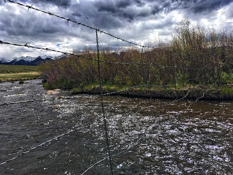 Locals Only:  A little know trout stream in Westcliffe, Colorado