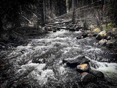 Fish and Camp:  Foos Creek